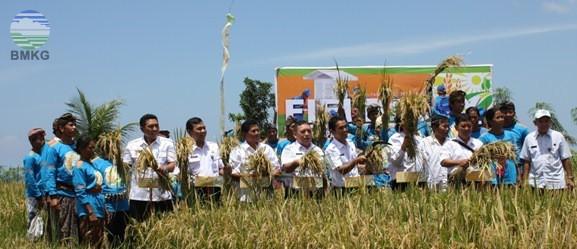 Panen Raya SLI Tahap 3 Provinsi Bali