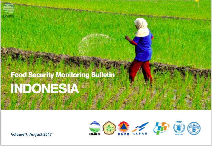 Buletin Pemantauan Ketahanan Pangan INDONESIA (Vol. 7 - Juli 2017)
