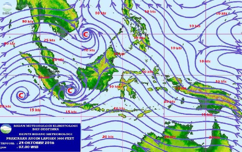 Dampak Hujan Lebat Melanda Sulawesi Selatan, Banjir dan Pohon Tumbang di Beberapa Tempat